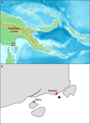 región de Daru, Papua Nueva Guinea