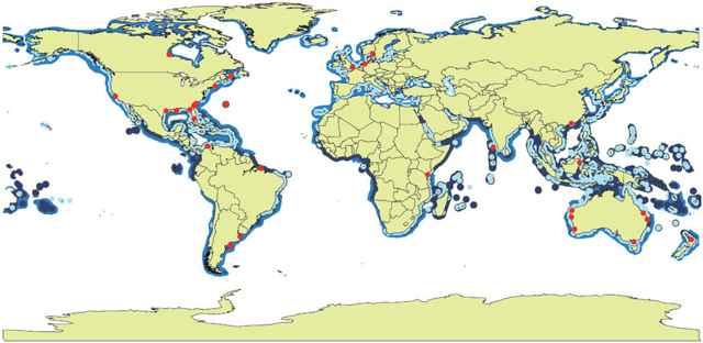 distribucion global de marismas, pastos marinos y manglares