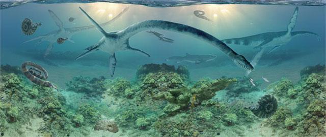 elasmosauro encontrado en Alaska