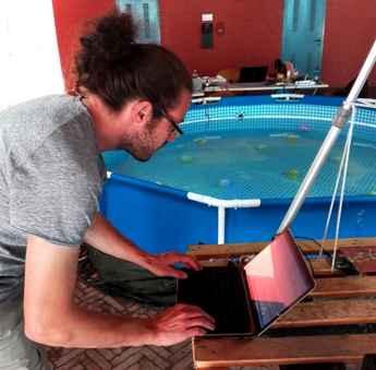 Prueba de enjambres de robots en Venecia