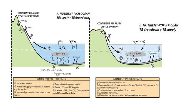 formación de montañas por tectónica de placas