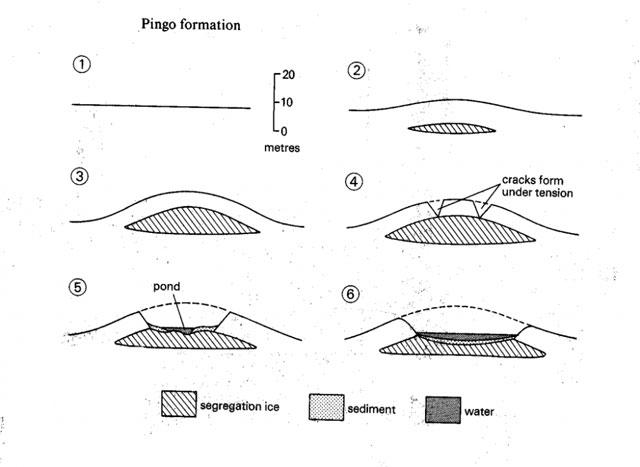 formación de un pingo