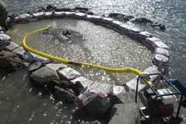 fuerte alrededor del fósil de plesiosaurio