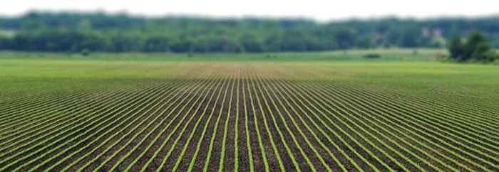 la humedad en la agricultura