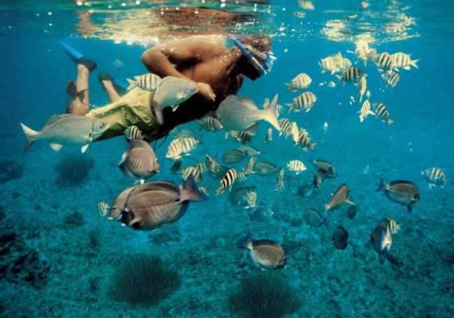 protector solar biodegradable para snorkel