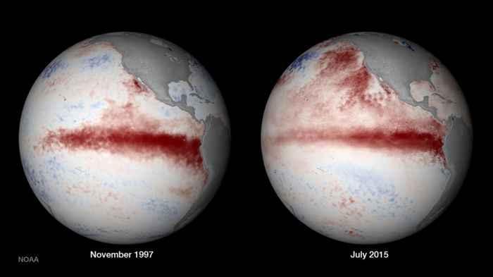 temperaturas en la superficie del mar 1997-1998, 2015-2016