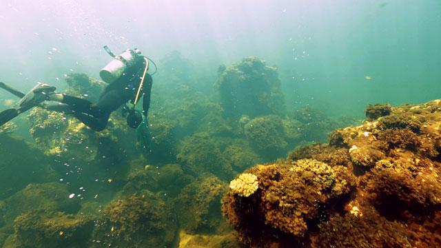 volcán submarino en la isla de Maug