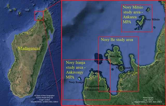 zonas de avistamiento de ballenas de Omura