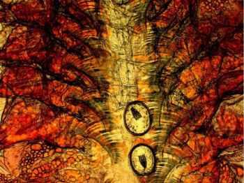Artemia infectada con larvas de tenia