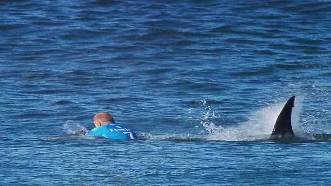 ataque de tiburón a Mick Fanning