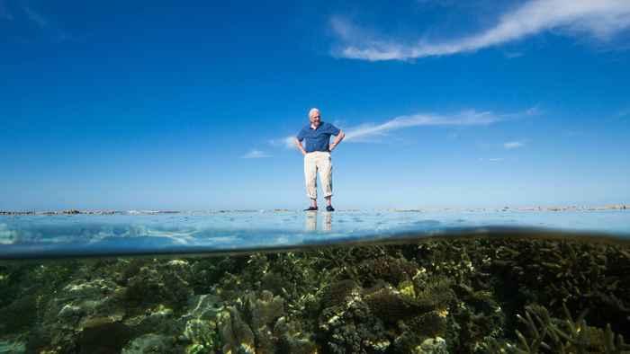 Nueva serie de David Attenborough se centra en la Gran Barrera de Coral