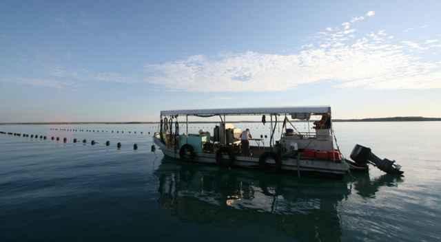 bote procesador de perlas en Broome, Australia