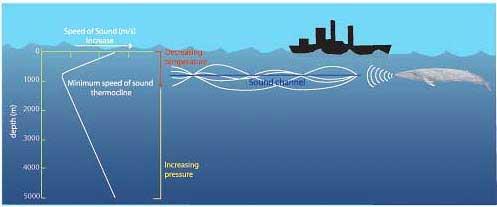 canelización del sonido en el mar