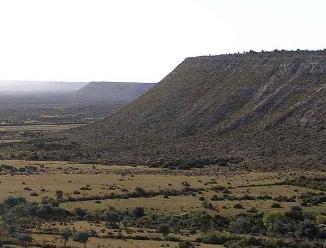chevron Fenambosy en Madagascar