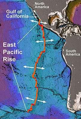 dorsal sur del Pacífico Este (SEPR)