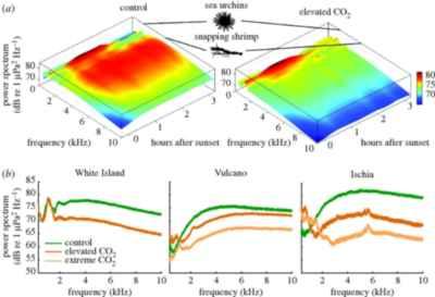 espectros acústicos de camarones con y sin CO2
