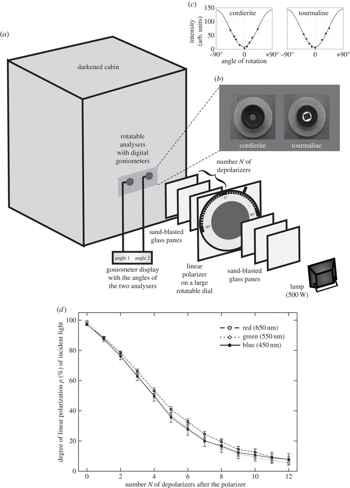 esquema del montaje experimental de polarización