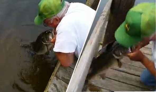 Hombre captura un enorme pez con sus propias manos
