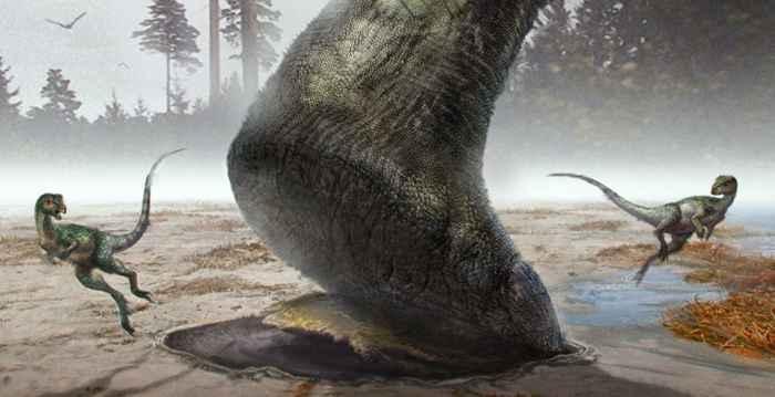 huella hecha por un saurópodo