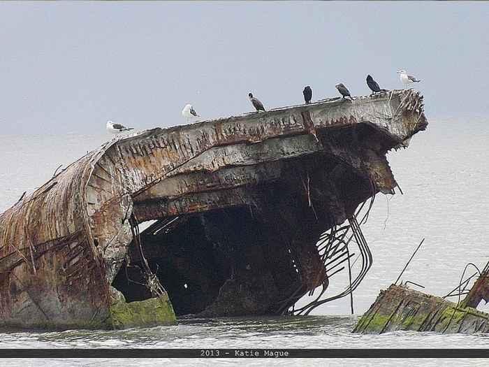 naufragio de SS Selma en Seawolf Park