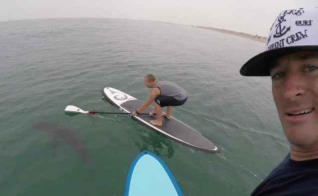 palistas se hacen una selfie con un tiburón