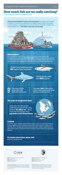 pesca no reportada - infografía