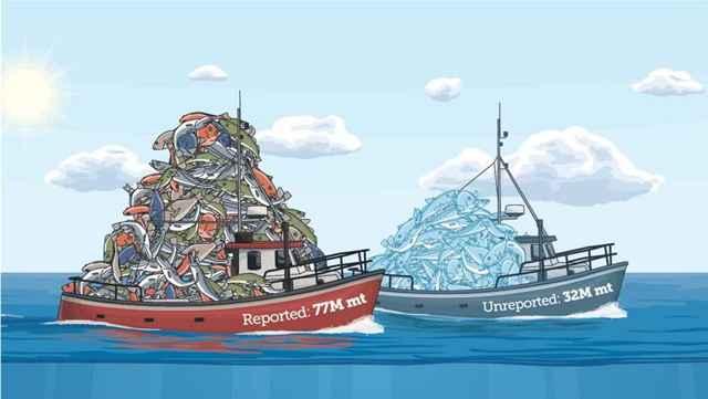 pesca no reportada