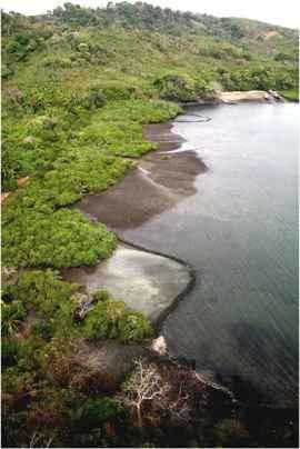 trampas para peces en la Isla de Pedro Gonzalez