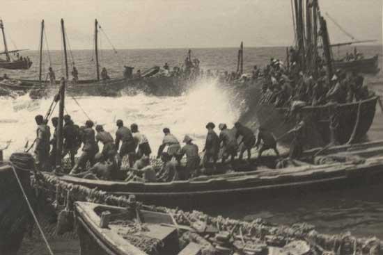 antigua pesca de la almadraba, Sancti Petri - 1949