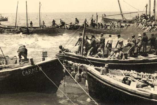 antigua pesca de almadraba, Sancti Petri, 1949