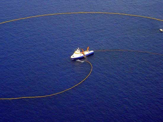 barco atunero de cerco faenando
