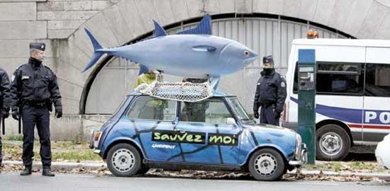 coche atún, Greenpeace en ICCAT París 2010
