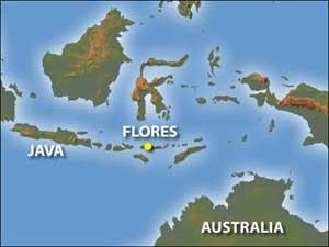 isla de Flores (Hobbit), mapa