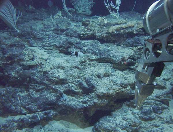 Macizo Atlántico, explorado por el submarino Alvin