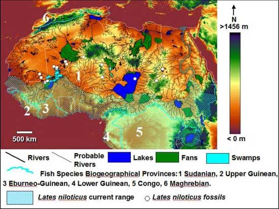 mapa especies de peces historia de áfrica