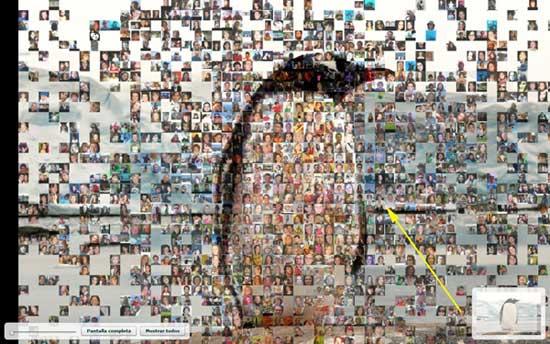 fotografía de Jesús Caceres en el mosaico del pingüino