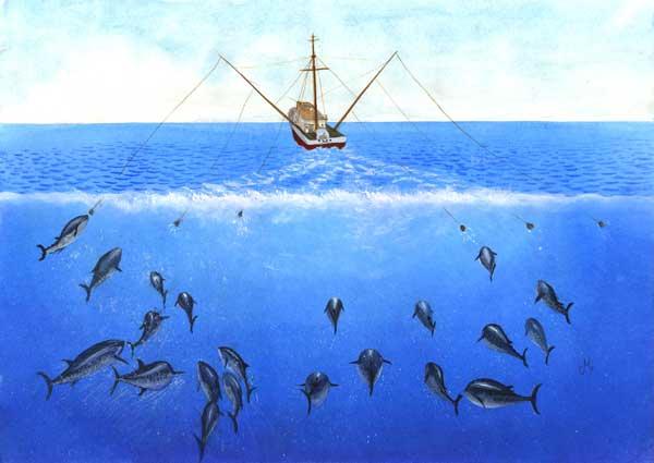 pesca tradicional de atún rojo