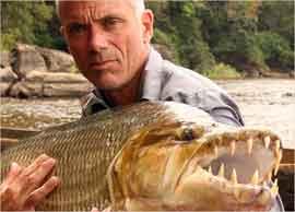 pez tigre goliat sostenido por Jeremy Wade