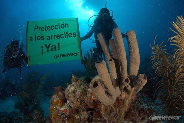protección para los arrecifes de coral en México, Greenpeace