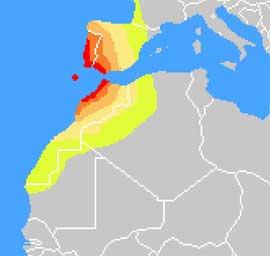 zonas de posibles tunamis en la Península Ibérica