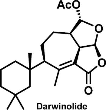Darwinolide