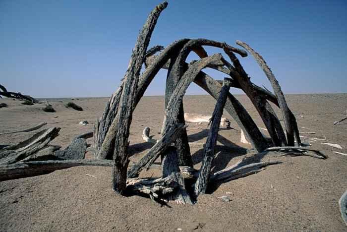 casa de huesos de ballena por el pueblo Khoikhoi, Namibia