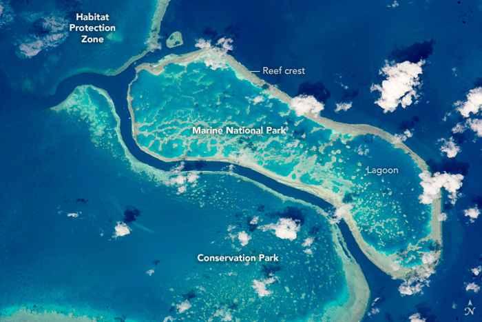 Gran Barrera de Coral en las islas Whitsunday