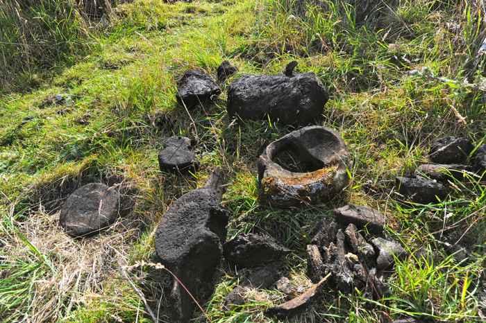 huesos de ballena en Echachist, en la Isla de Vancouver
