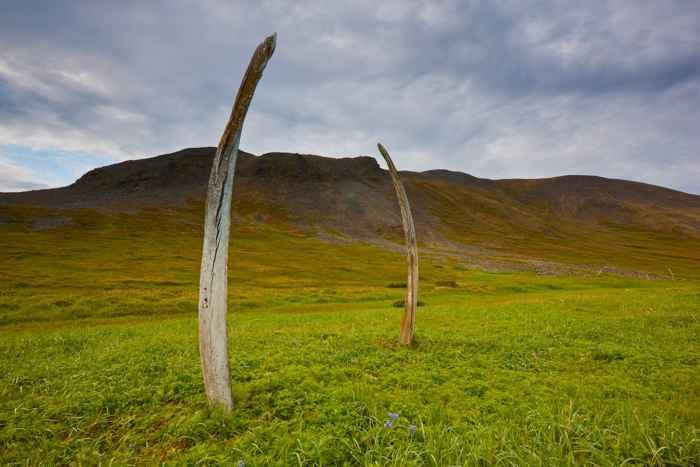 mandíbulas de ballena en el Callejón de los huesos, Isla Yttygran, Rusia