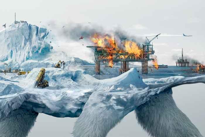 oso polar para Robin Wood, zoom