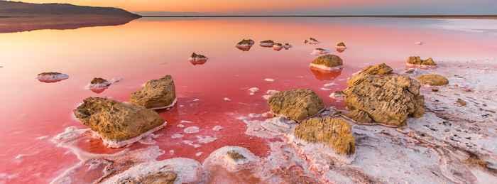 Dunaliella salina en el Mar Muerto