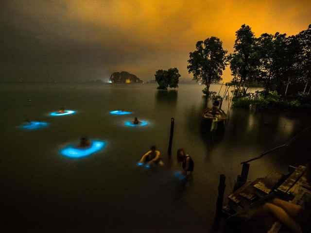 fitoplancton bioluminiscente en Tailandia