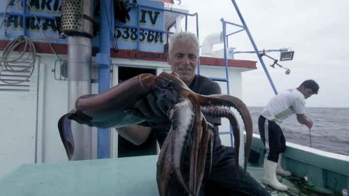 Jeremy Wade con un calamar de Humboldt
