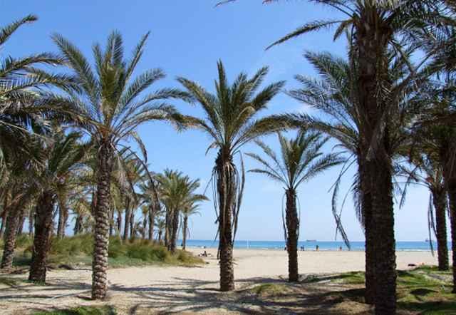 playa de El Pinar, Castellón